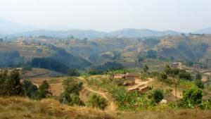 Rwanda Safaris With Green Hills Ecotours